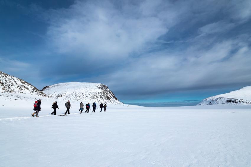 Wild-Eye-Svalbard-Walking
