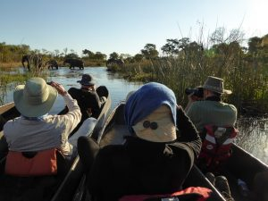 Boat-Ride-Okavango-Delta-Courtesy-Botswana-Trek