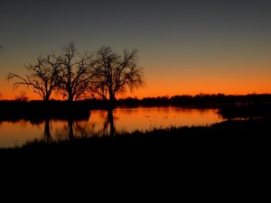 Sunset-Okavango-Delta-Courtesty-Botswana-Trek