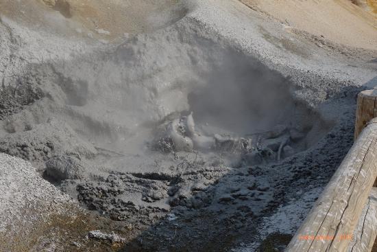 Lassen-Boiling-Mudpot
