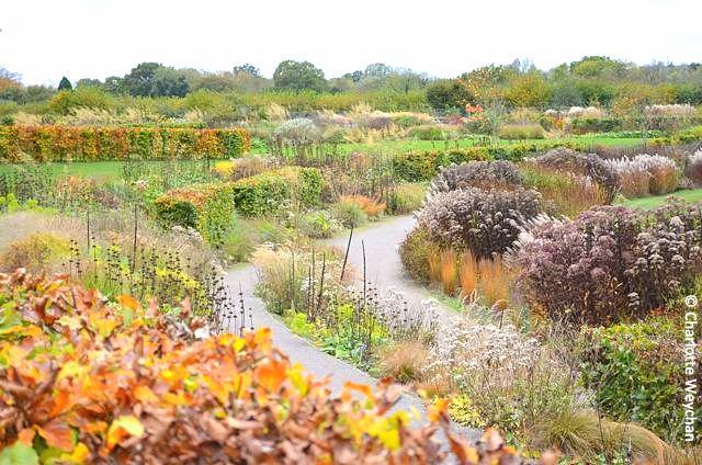 Royal-Horticultural-Society-Wisley
