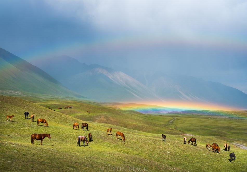 180715-JBF2442-Visionary-Wild-Kyrgyzstan