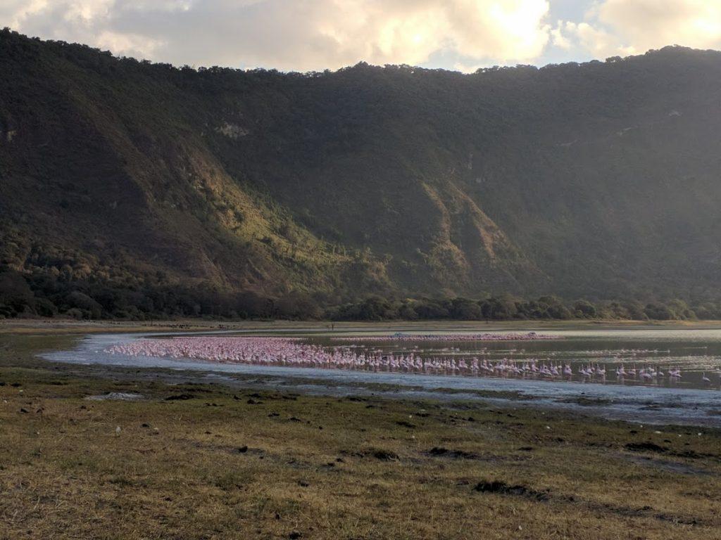 Walking safari to Lake Natron -65