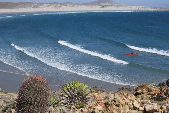Sea-Kayaking-Loreto